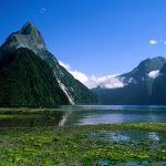 Nueva Zelanda 3