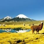 Chile 7